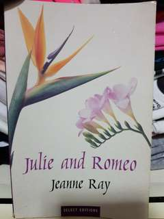 Julie and Romeo story book (quote reasonable price)
