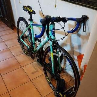 Road Bike (Totem)
