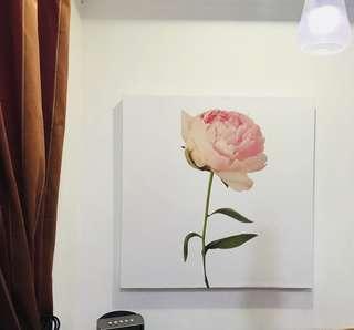 Peony, Giclee print on Cotton Canvas