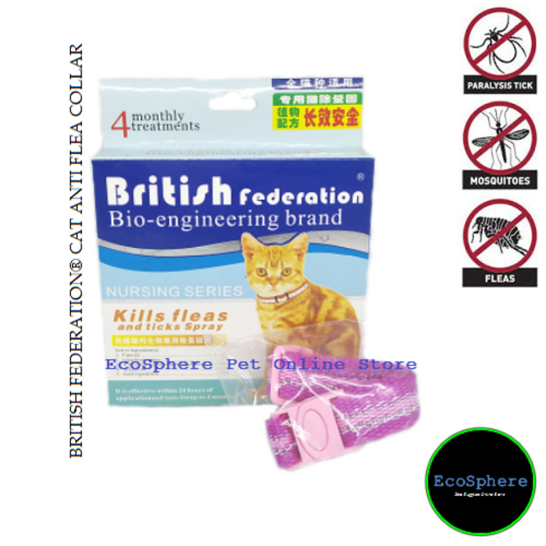 Image result for cats british federation collar