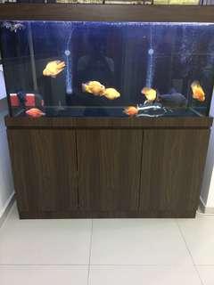 4ft Fish Tank w cabinet