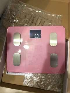 Digital Led Scales