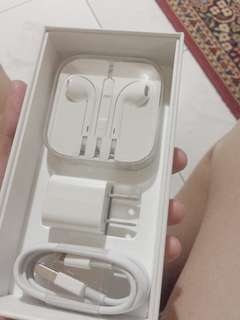 Original Apple Products (Earpods & Charger)