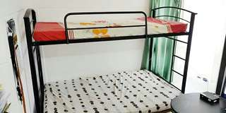 Bunk Bed with Foam