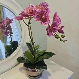 Artificial Premium Latex Orchid With Ceramic Vase