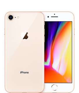 IPhone 8 64G (Gold)