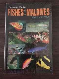 Maldives Fishes