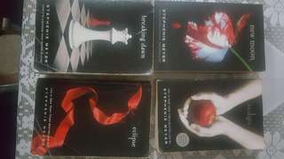 Twilight series novel