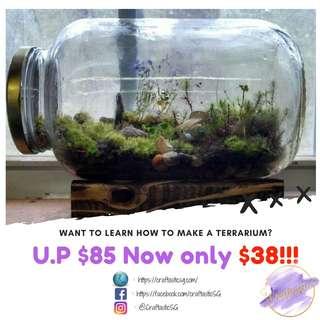 Terrarium and Fresh flower bouquet class @ $38 ONLY
