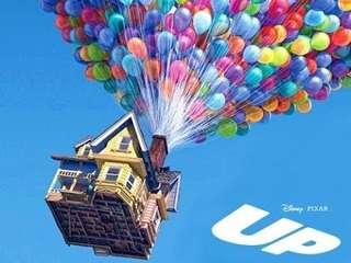 "[BN] ""Up"" Inspired DIY House"