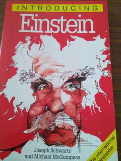 Introducing Einstein - Joseph Schwartz, Michael McGuinness