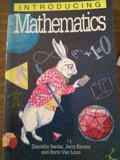 Introducing Mathematics - Ziauddin Sardar,  Jerry Ravetz