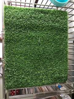 Artificial Grass for pee pan 60cm by 50cm