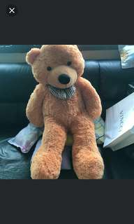 (Free door delivery) 120cm Fluffy Giant Cuddly Bear
