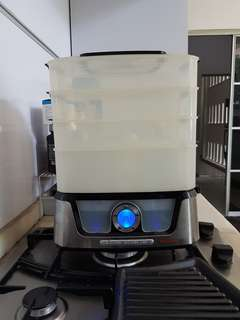 Electronic steamer