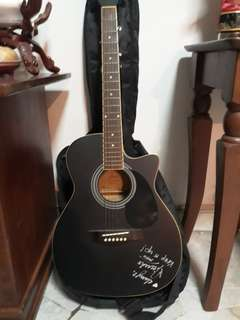 Fina Professional Guitar