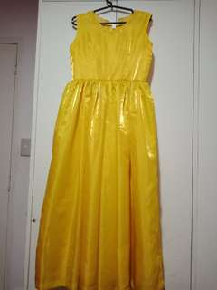 Dress gown for sale