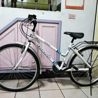 全新捷安特G2800 腳踏車