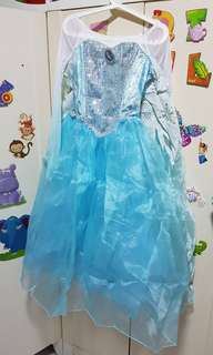 Costume - Elsa Dress