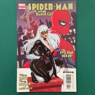 Spider-Man and the Black Cat No.4 comic