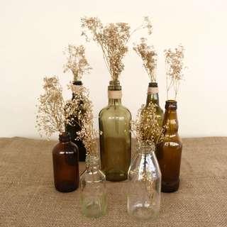 RENT: Assorted Glass Bottles (Set A)