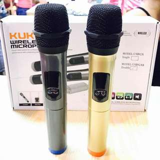 Double Wireless Microphone