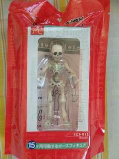 Pose Skeleton Human (01)