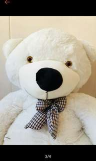 (Limited Sales with Mystery Gift) 140cm 2kg+ Giant Fluffy White Teddy Bear