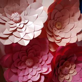 Take all Giant Paper Flower