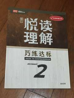 Secondary 2 Chinese Comprehension