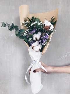 Cotton & Eucalyptus
