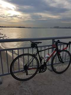 Polygon Road Bike