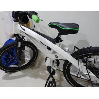 BMW Kid Mountain Bike