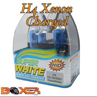 H4 5500k halogen bulbs