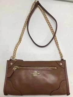 Coach bag 手袋