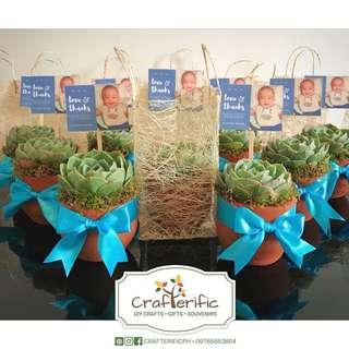Cactus & Succulents Souvenirs/ Giveaways