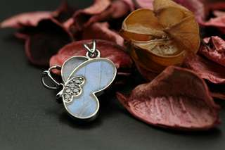 Navia Jewelry Real Butterfly Wing Jewelry Morpho aega Silver Pendant