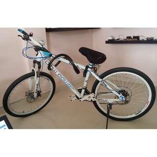 BMW Bicycle Mountain Bike