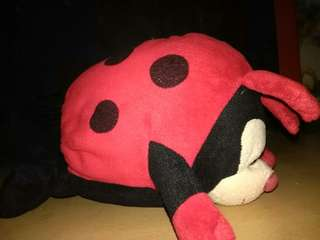 Lady bug stuffed toys
