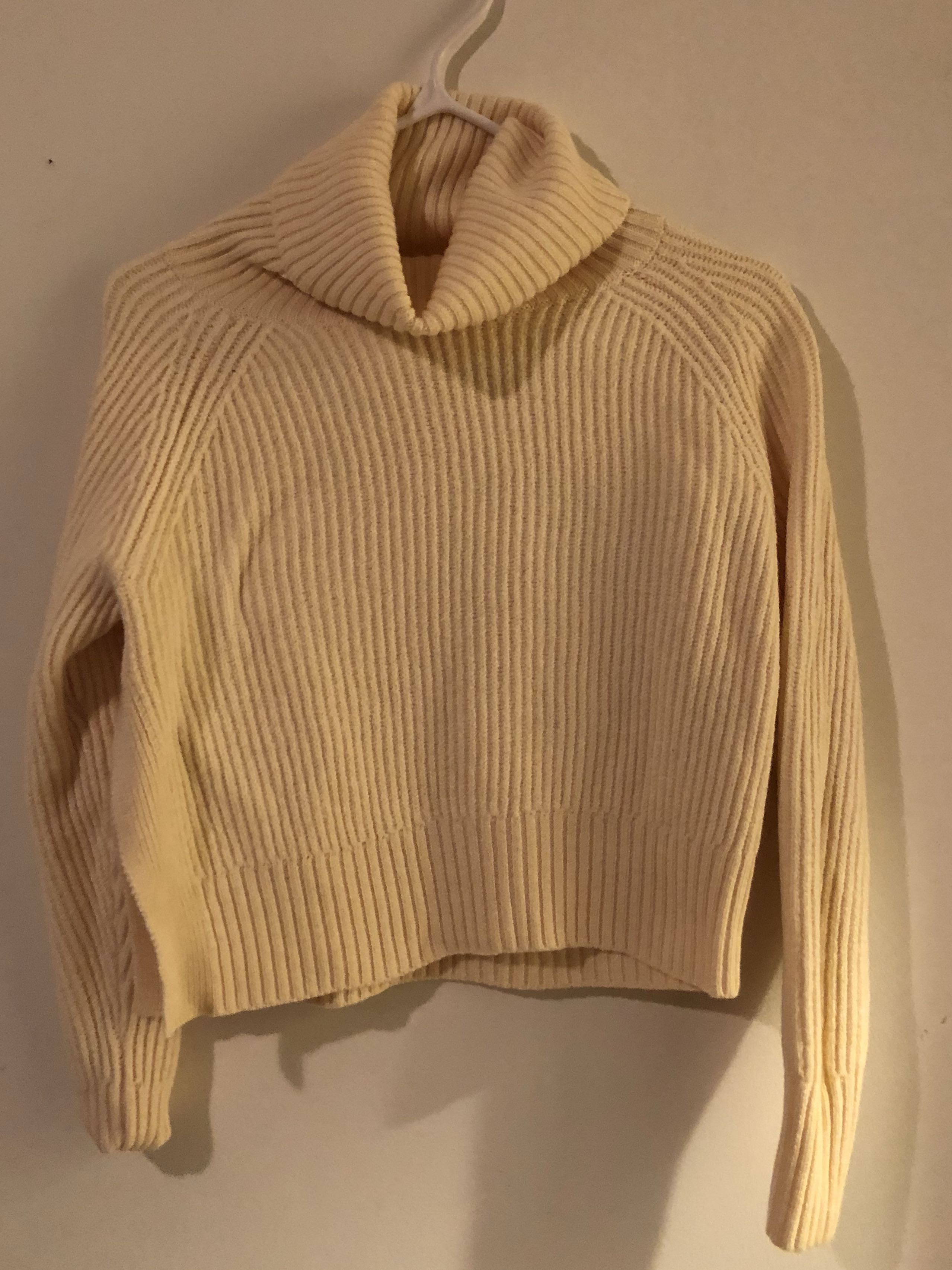 Cropped Turtleneck from Wilfred Free