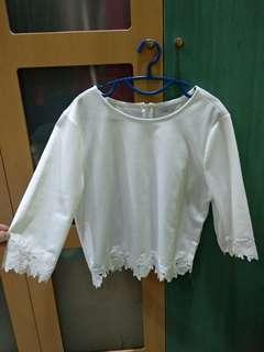 Elegant Lace sleeve White Crop Top Blouse