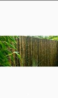 Pagar rumah dari bambu