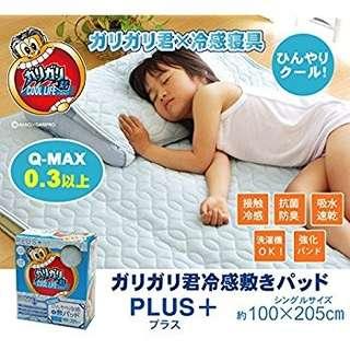 日本直送~🆒日本冰感床墊PLUS+❄