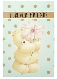 BN Friends Forever A5 notebook