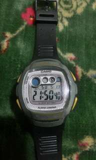 Casio lawas