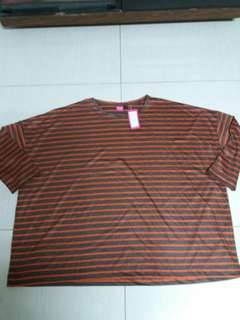 BN huge  Striped shirt