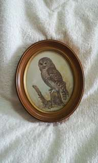 Vintage Owl Picture in Oval Wooden Photo Frame