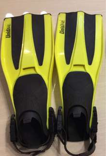 Unidive fins and dive bag