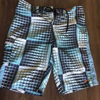 Speedo Board Shorts
