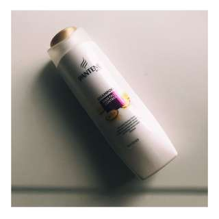 Pantene Anti Hair Loss Shampoo